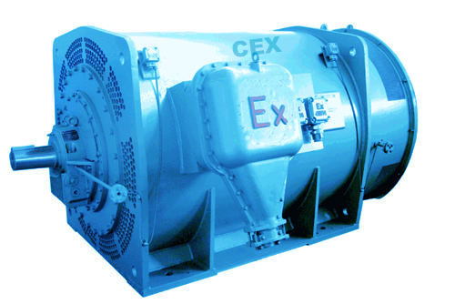 Various High Voltage Motors Cex High Voltage Motor